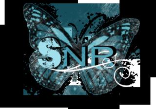 SNR butterfly logo